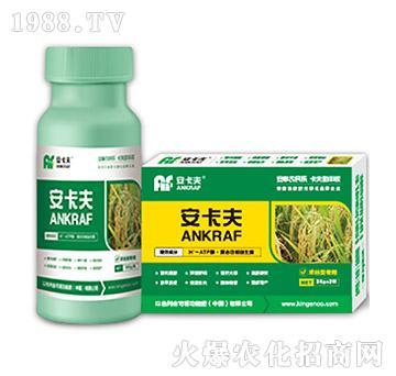 禾谷类专用叶面肥-安卡