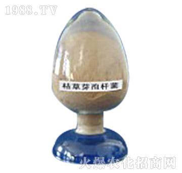 枯草芽孢杆菌-莲花酶