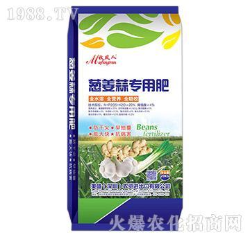 葱姜蒜专用肥-美盛