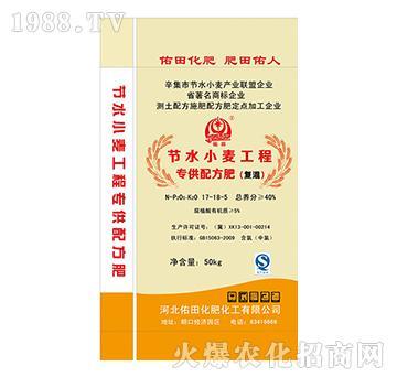 节水小麦工程专供配方肥(复混)17-18-5-佑田
