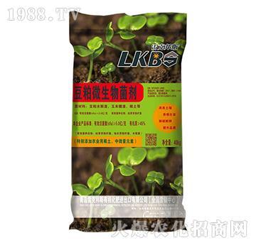豆粕微生物菌剂-雷克邦斯