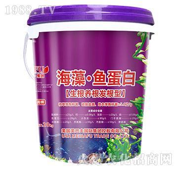 生根养根发根型-海藻・