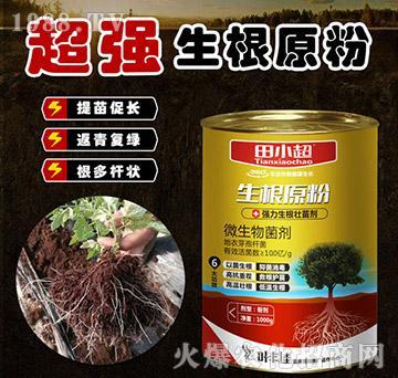 强力生根壮苗剂-生根原粉-田小超