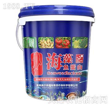 含腐殖酸水溶肥料-海藻�~蛋白-�W��森