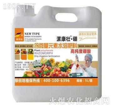 高纯度硼酸含微量元素水溶肥料-漯康壮-绿田地
