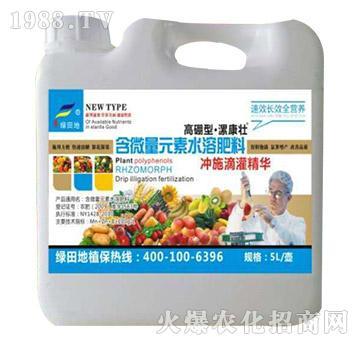 高硼型含微量元素水溶肥料-漯康壮-绿田地