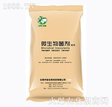 微生物菌剂-滇绿-云南土妈妈