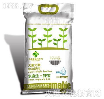 大量元素水溶肥料20-20-20+TE(A型)-中仓