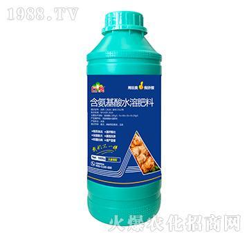大姜需配含氨基水溶肥料