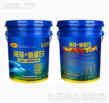海藻+鱼蛋白-佰微生