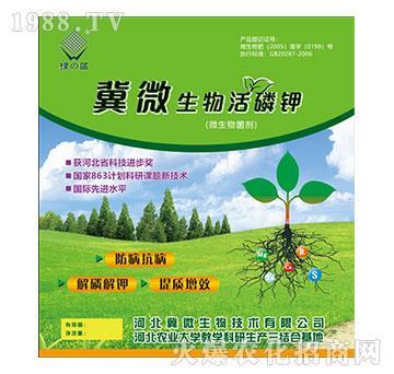微生物菌剂-冀微生物活磷钾-绿蓝-冀微生物