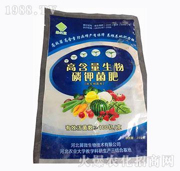 微生物菌剂-高含量生物磷钾菌肥-绿蓝-冀微生物