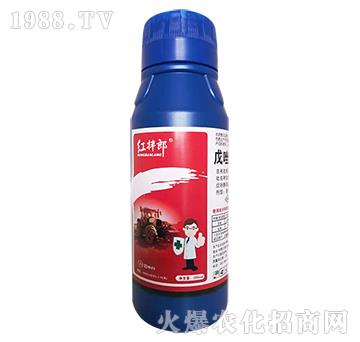 3%戊唑・吡虫啉-小麦拌种剂安全增产―红伴郎-贝斯夫