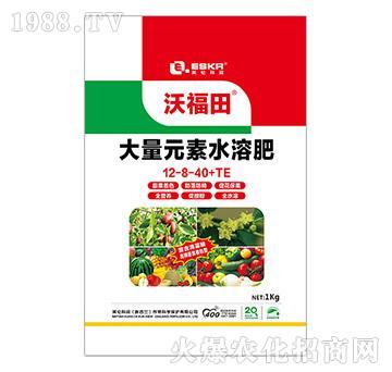 大量元素水溶肥12-8-40+TE-沃福田-英伦科润-天利农
