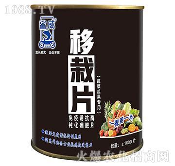 蔬菜瓜果专用移栽片-鲨威-高晟
