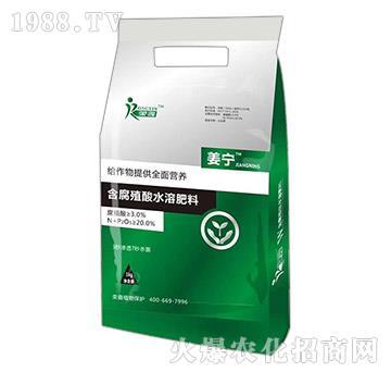 含腐植酸水溶肥料-姜��-�s鑫