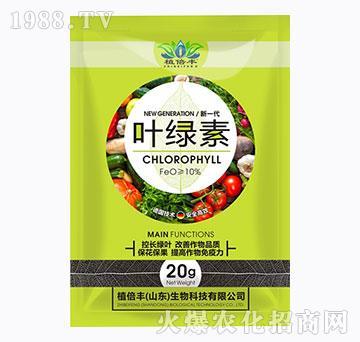 叶绿素-增花保果