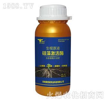 硅藻激活酶-生根原液-爱普诺