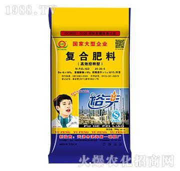 高效控释型复合肥料20-20-5-歌利洋