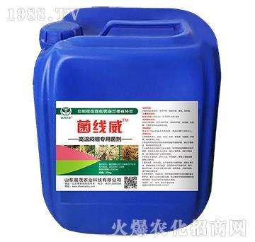 高溫悶棚專用菌劑-菌線威-晨茂農業