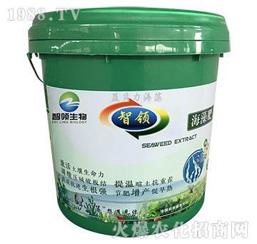 海藻冲施肥(水剂桶装)-智领生物