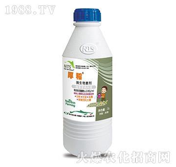 微生物菌剂-厚稻-恩特施