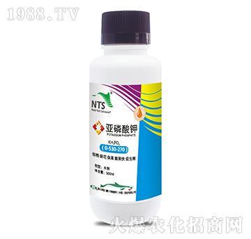 亚磷酸钾-恩特施
