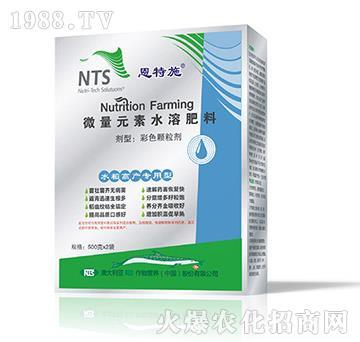 水稻高产专用型-微量元素水溶肥料-恩特施