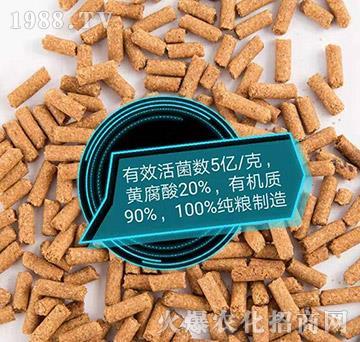 微生物菌劑顆粒-鑫東肥業