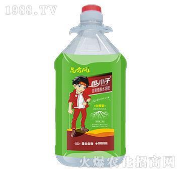含腐植酸水溶肥-根小子-爱普达