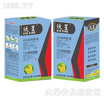 40%异丙草・莠+75%烟嘧磺隆-欣星-长兴第一化工