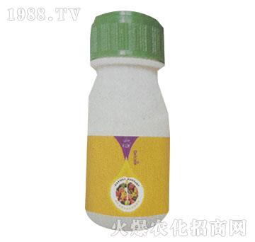 精致(瓶)-胜尔