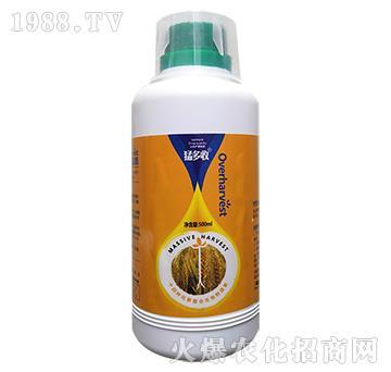 小麦专用猛多收(500ml)-胜尔