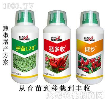 辣椒增产方案-胜尔