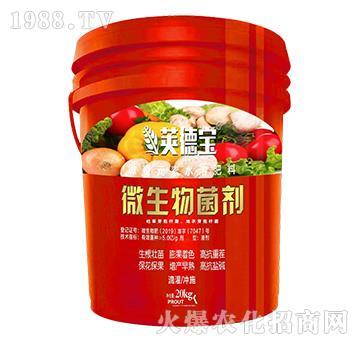 微生物菌劑-莢德寶-康豐農業