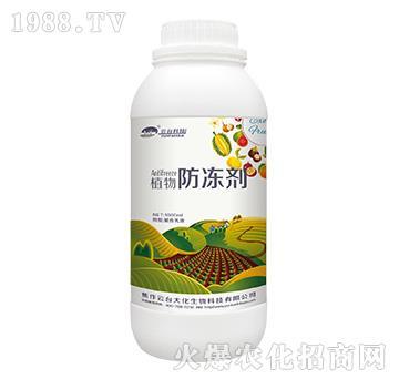 植物防冻剂-云台大化