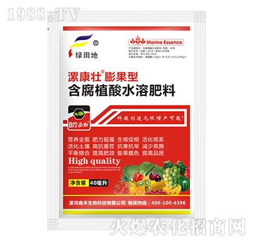 膨果型含腐殖酸水溶肥料-漯康壮-绿田地