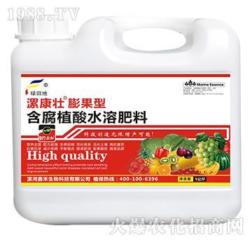 膨果型含腐殖酸水溶肥料(壶)-漯康壮-绿田地
