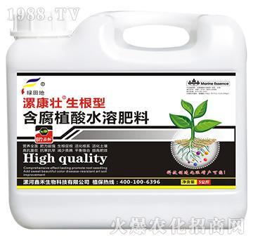 生根型含腐殖酸水溶肥料(壶)-漯康壮-绿田地