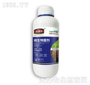 根腐烂根专用微生物菌剂-根腐快康-贝德乐
