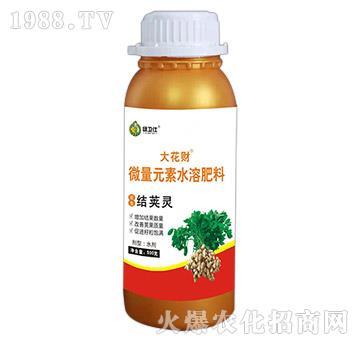 花生结荚灵-微量元素水溶肥料-绿仕生物