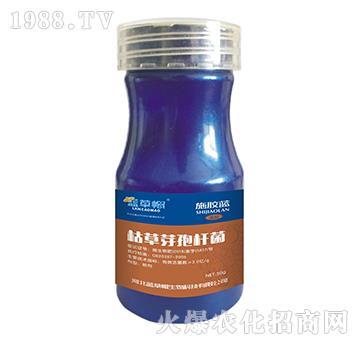 枯草芽孢杆菌-施胶蓝-蓝草帽生物