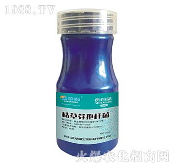枯草芽孢杆菌-施白蓝-蓝草帽生物