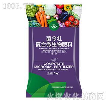 复合微生物肥料-菌令壮-为峰