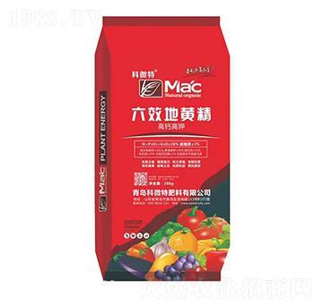 高钙高钾-六效地黄精-科微特