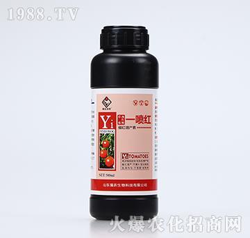 催红增产素-草莓西红柿一喷红(500ml)-强农生物