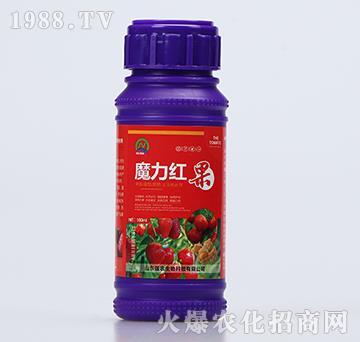 草莓番茄菇娘生物转色剂-魔力红果-强农生物