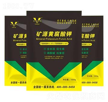 矿源黄腐酸钾-巴西蕾诺
