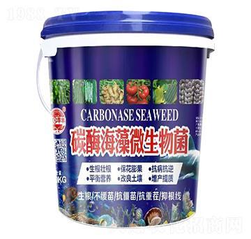 碳醮海藻微生物菌-田园季丰-大丰肥业
