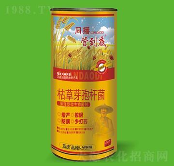 枯草芽孢桿菌-管到底-藍虎品牌